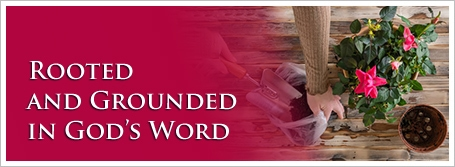 Rooted and Grounded in God's Word