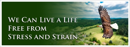 We Can Live a Life Free from Stress and Strain